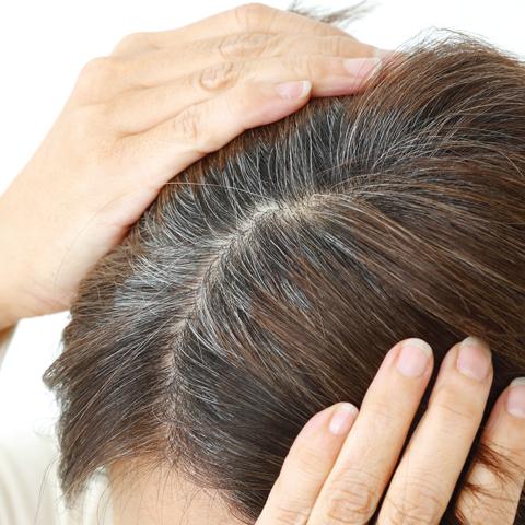 ふんわり育毛を叶える<br>薬用育毛剤